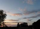Západ slunce Lísky č. 16